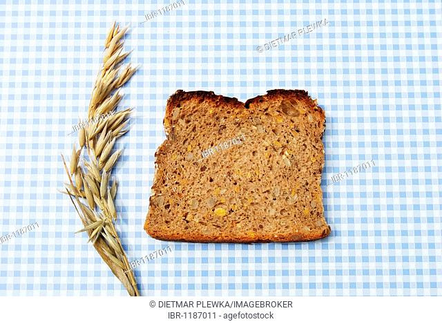 Single slice of bread, wholemeal bread with pumpkin and sunflower seeds on blue and white tablecloth, with oats