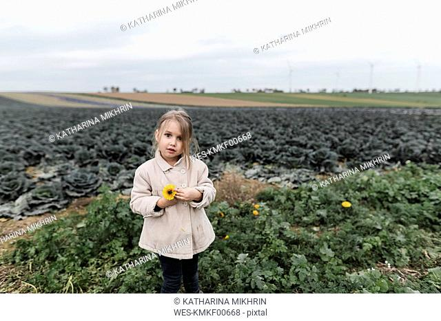 Portrait of a girl standing at a cabbage field holding a flower