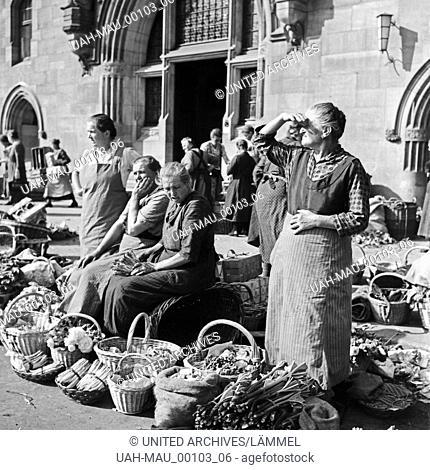 Marktfrauen bieten frisches Gemüse auf dem Wochenmarkt vor dem alten Schloss in Stuttgart an, Deutschland 1930er Jahre. Market women offering fresh vegetables...
