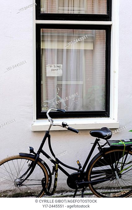 Bicycle parked by no parking sign, Amsterdam, Netherlands