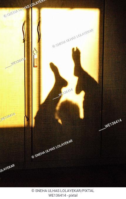 Human lage shadow on cupboard,poona,Maharashtra,India