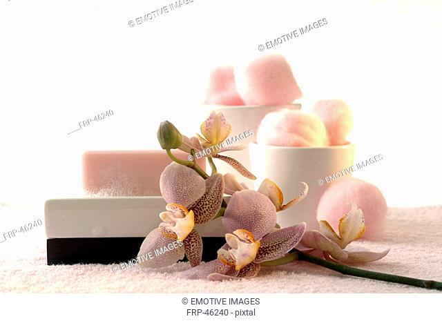 Foamy soap bar and cotton wool decorated with an orchid on a soap dish