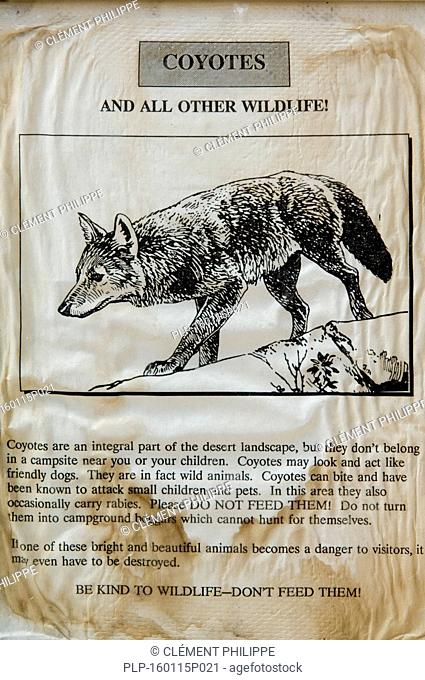 Coyote (Canis latrans) warning poster in North American National Park, USA