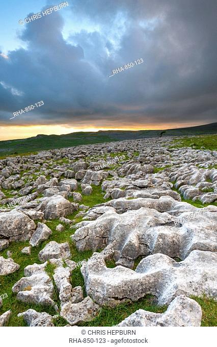Twistleton Scar Limestone Pavement, Ingleton, Yorkshire Dales, Yorkshire, England, United Kingdom, Europe