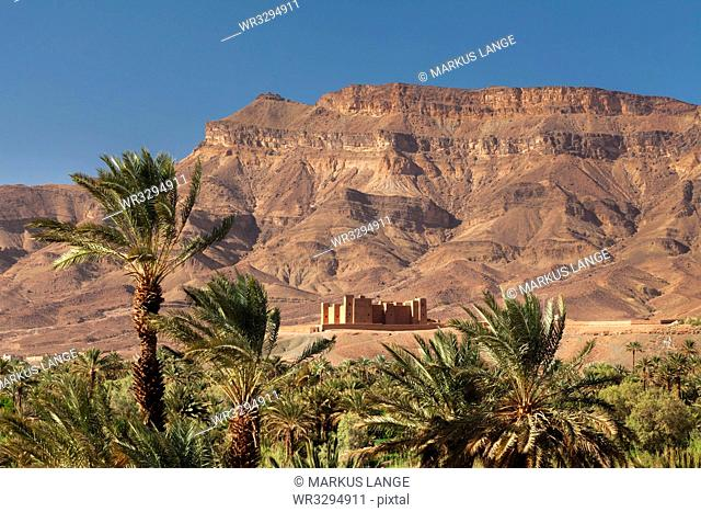 Tamnougalt Kasbah, Draa Valley, Jebel Kissane behind, Zagora Province, Morocco, North Africa, Africa