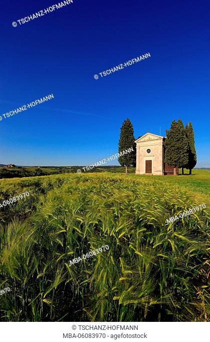 Italy, Capella di Vitaleta in Val d Orcia, Valdorcia, close San Quirico D Orcia, Tuscany