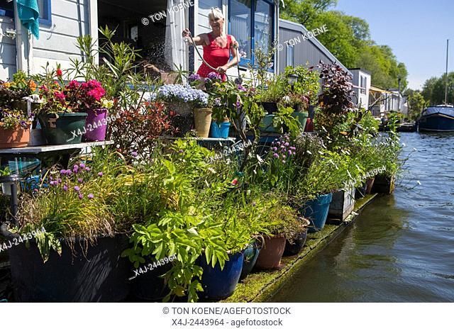 Dutch woman watering her plants on a house boat in Amsterdam garden, gardening, flowers, green, vegetation, recreation
