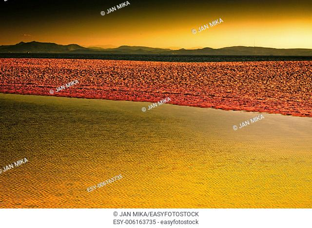 Colorful landscape, abstract creative colored photo of seaside