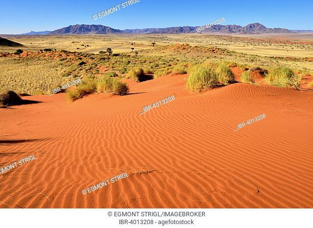 View over Namib Rand Nature Reserve towards Nubib Mountains, Namib Desert, Namibia