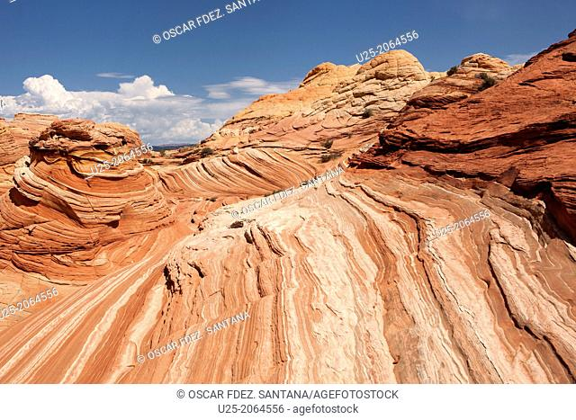 The Wave formation in Coyote Buttes North, Paria Canyon-Vermilion Cliffs Wilderness, Kanab, Utah, USA