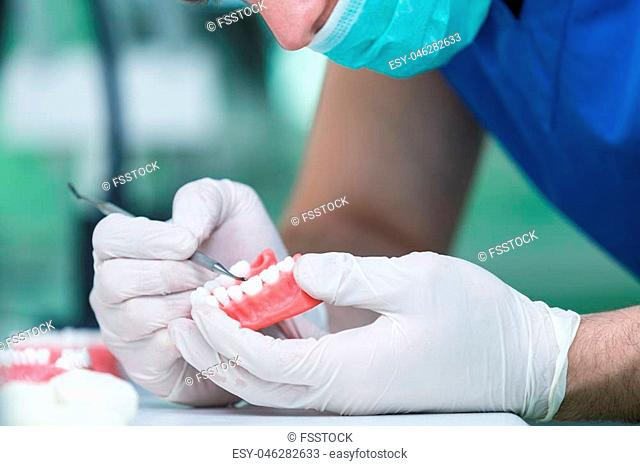 Dental prosthesis, dentures, prosthetics work. Prosthetics hands while working on the denture, false teeth, a study and a table with dental tools
