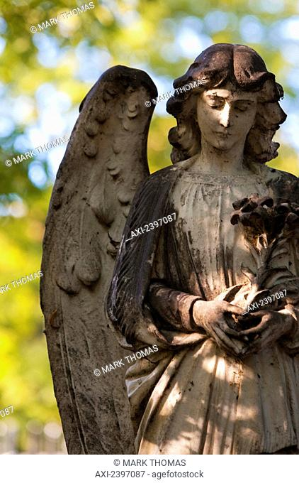 Detail of an angel figurehead covered in moss, Highgate Cemetery; London, England
