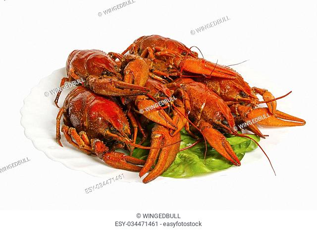 Boiled crayfishes on the plate, isolated on white background