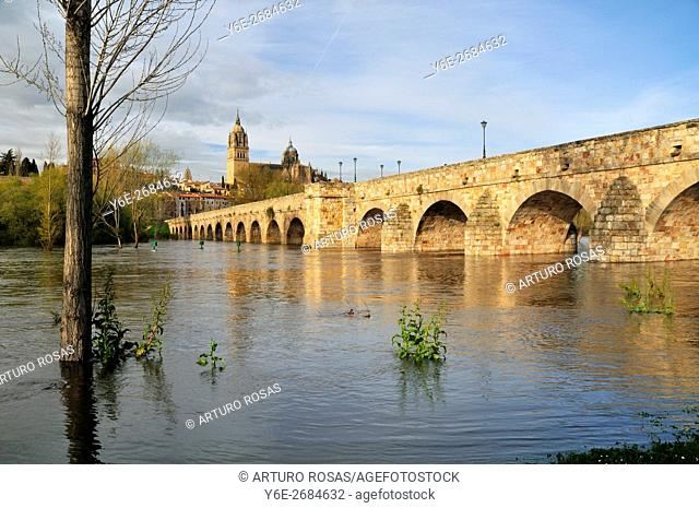 Roman Bridge and old cathedral of Salamanca, Spain