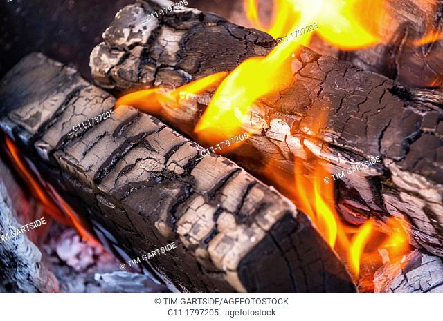 wooden logs burning on fire,bromley,kent,england,uk,europe