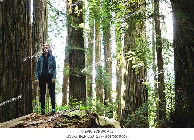 Young Woman Standing on Fallen Tree Trunk, Stout Grove, Jedediah Smith Redwoods State Park, California, USA