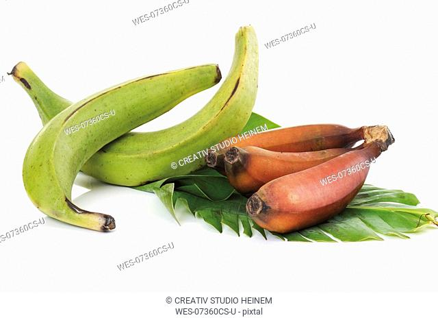 Two plantains and bunch of red bananas on leaf, close-up
