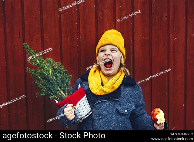 Laughing boy standing in front of wooden wall with potted Chritsmas tree and candied apple