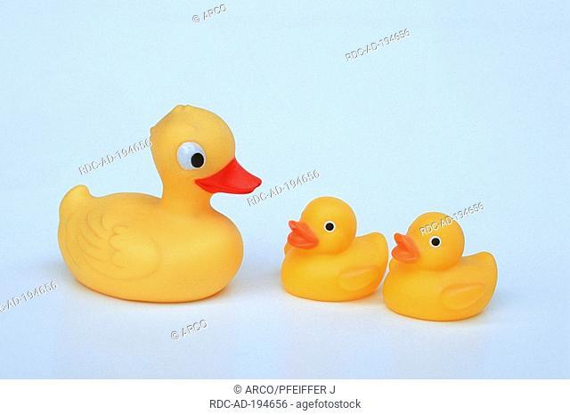 Rubber ducks, plastic duck, toy duck, cut out, object