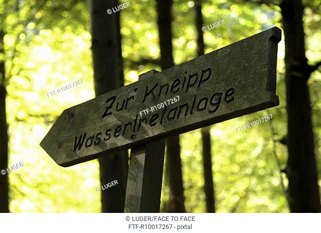 Wooden sign board in forest, low angle view