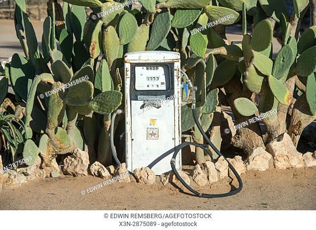 An antique gas pump is situated in front of cacti plants in Solitaire, Namibia