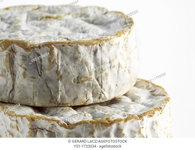 Camembert, French Cheese made with Cow Milk in Normandy