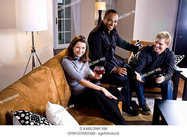 Friends having drinks together in modern living room
