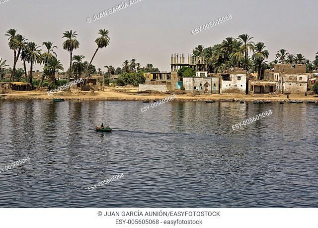 Life on river Nile in Egypt: fisherman are rowing through home, animals are grazing on the shore, palm and small village on the background and blu fresh water...
