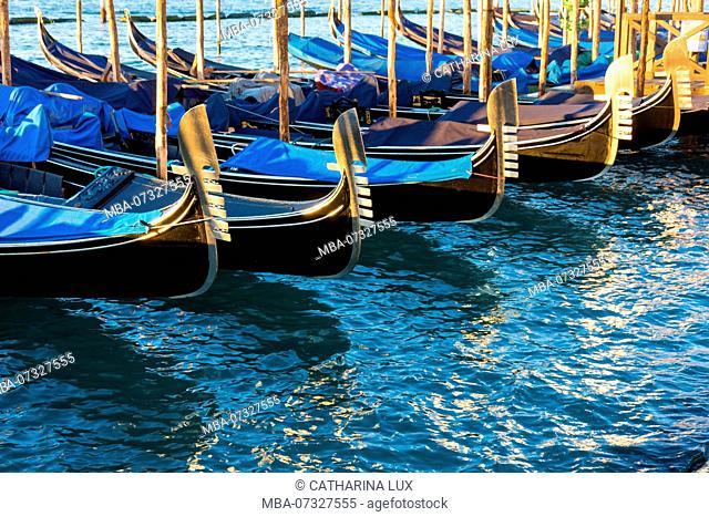 Venice, gondolas in the morning light