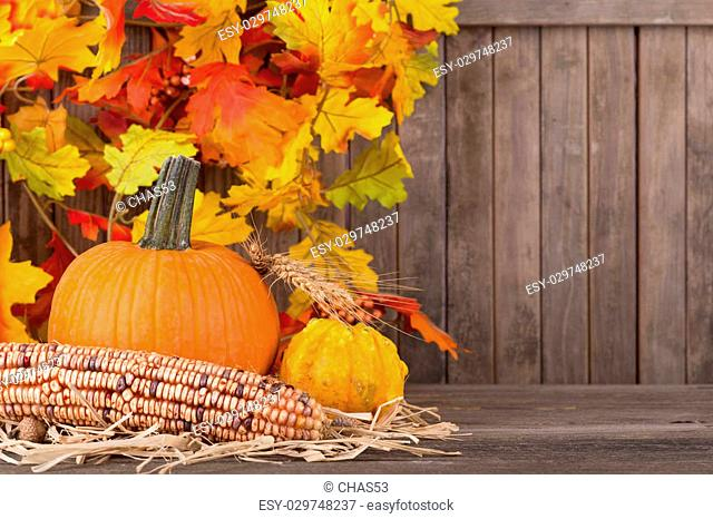 Fall pumpkin, squash and corn with colorful leaf dcoration in background