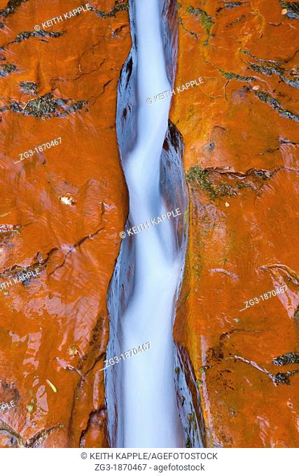 The crack that funnels water through The Subway on the left fork of North Creek at Zion National Park, Utah, USA