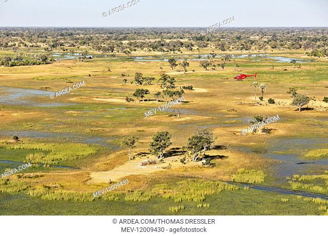 Freshwater marshes with streams, channels and islands - the helicopter is on a scenic flight - aerial view - Okavango Delta, Moremi Game Reserve, Botswana
