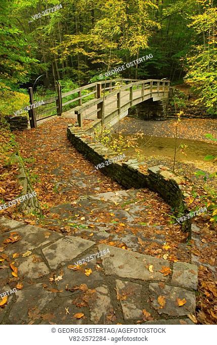 Trail bridge, Robert H Treman State Park, New York