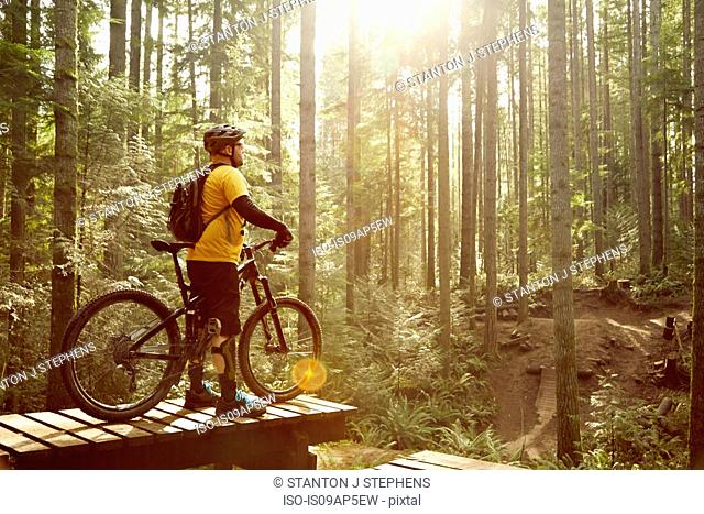 Mature man standing with mountain bike, in forest, rear view