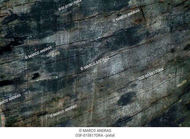 a black grey rock coal texture