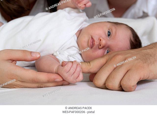 Portrait of newborn baby girl with hands of her father and mother