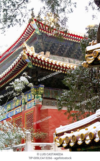 China, Beijing, The Forbidden City, the Royal garden in winter