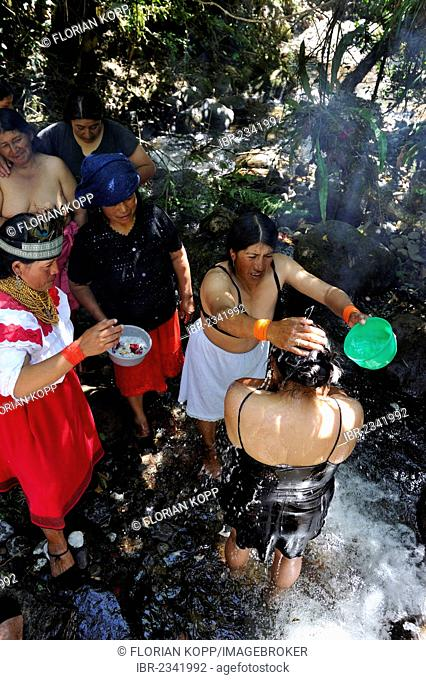 Traditional ablutions to ward off evil spirits and to cleanse the soul of the indigenous Caranqui people, this ceremony starts the celebrations of the sun...