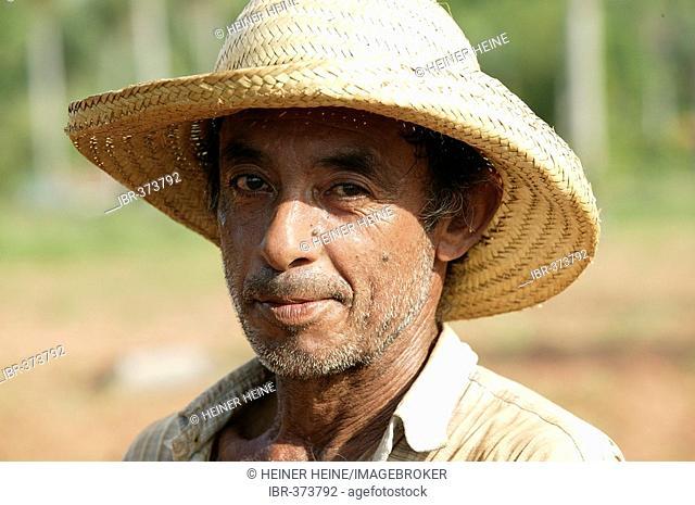 Field worker, portrait, Paraguay, South America
