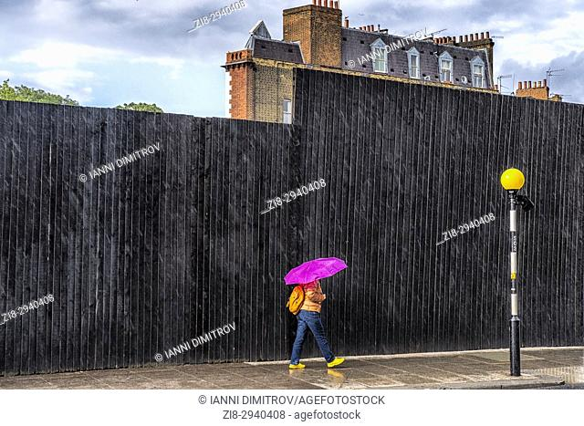 Summer rain-purple umbrella, South Kensington, London