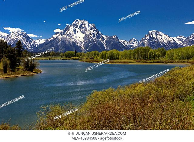 Oxbow Bend - on the Snake River in June Grand Teton National Park, Wyoming, USA