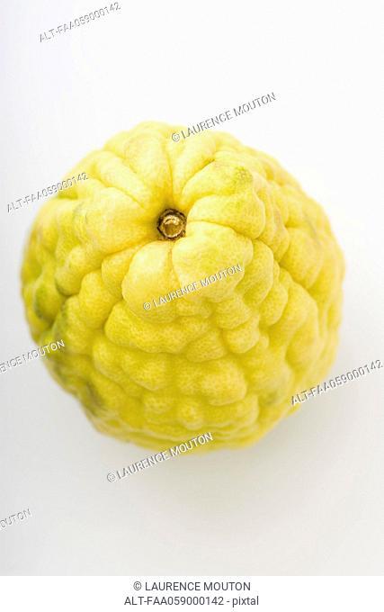 Balady citron
