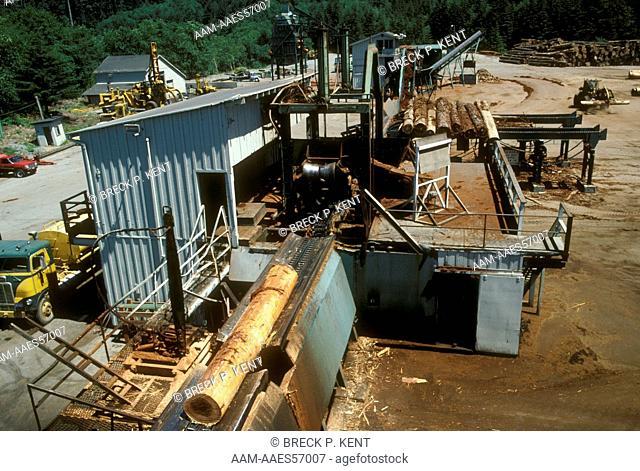 Sawmill: Arcata Redwood Camp Orick, CA