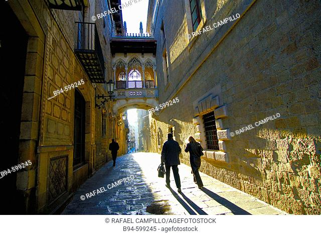 Carrer del Bisbe Irurita. Gothic quarter. Barcelona. Spain