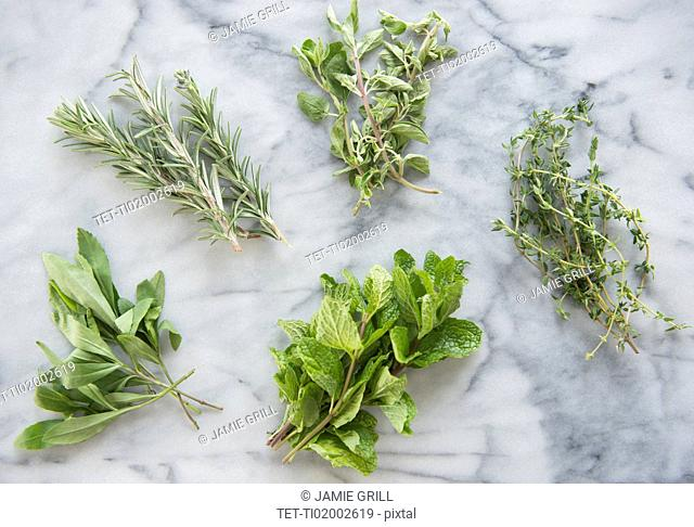 Bunches of various herbs on marble background