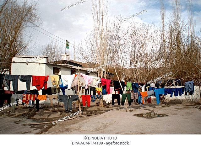 Clothes kept for drying ; Leh ; Ladakh ; Jammu and Kashmir ; India 11- April-2008