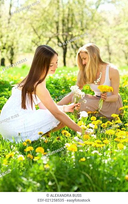 two young women picking flowers in a meadow in spring