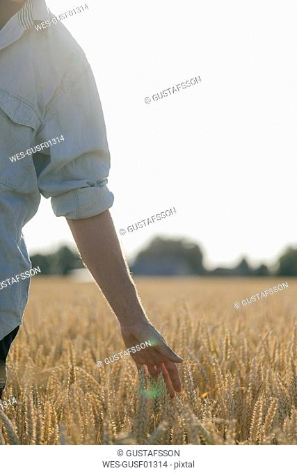 Close-up of man in a field touching ears