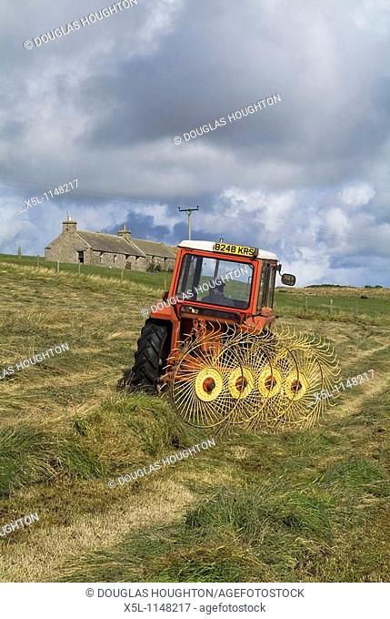 HARVESTING FARMING Tractor spreading silage to dry grass for harvesting and cottage Orkney