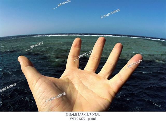 Man's open palm with blue sea in the background, Red Sea, Egypt